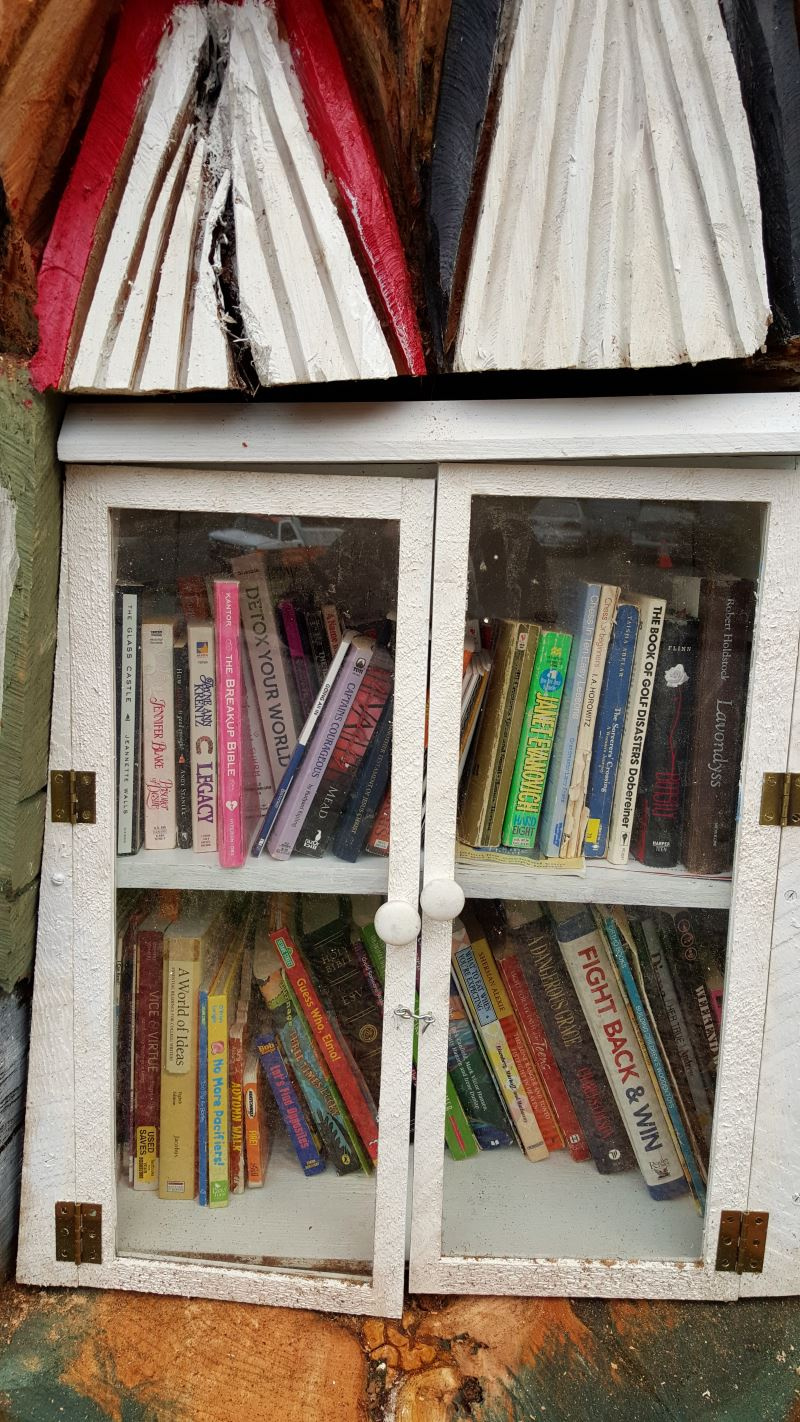 little-free-library-carved-into-cedar-stump_04